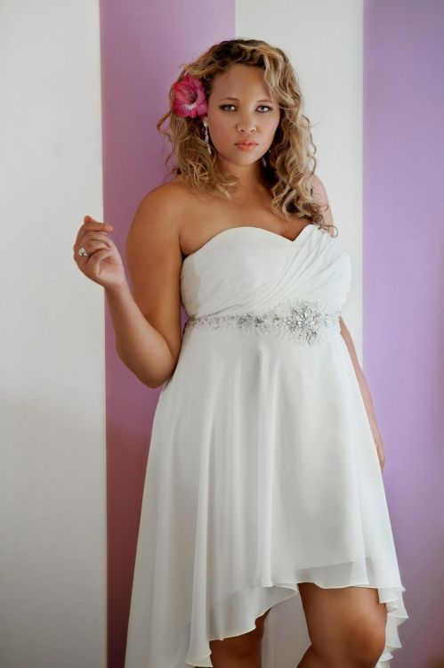 Simple Casual Plus Size Wedding Dresses Wedding Dresses