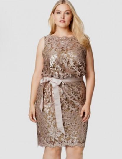Plus Size Lace Dress 2016 2017 B2b Fashion