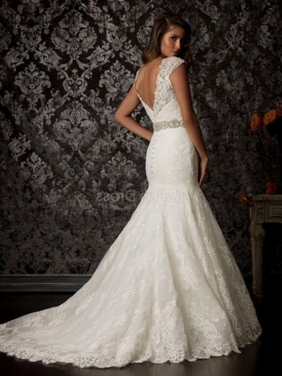 Plus size lace fit and flare wedding dress 2016 2017 b2b for Fitted wedding dresses for plus size