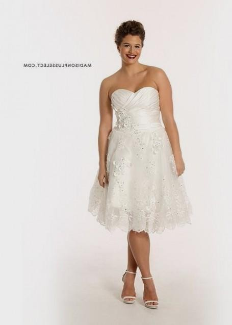Plus size short wedding dresses 2016 2017 b2b fashion for Short wedding dresses plus size