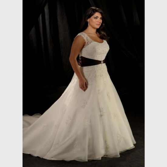 Plus Size Wedding Dresses With Color 2016 2017