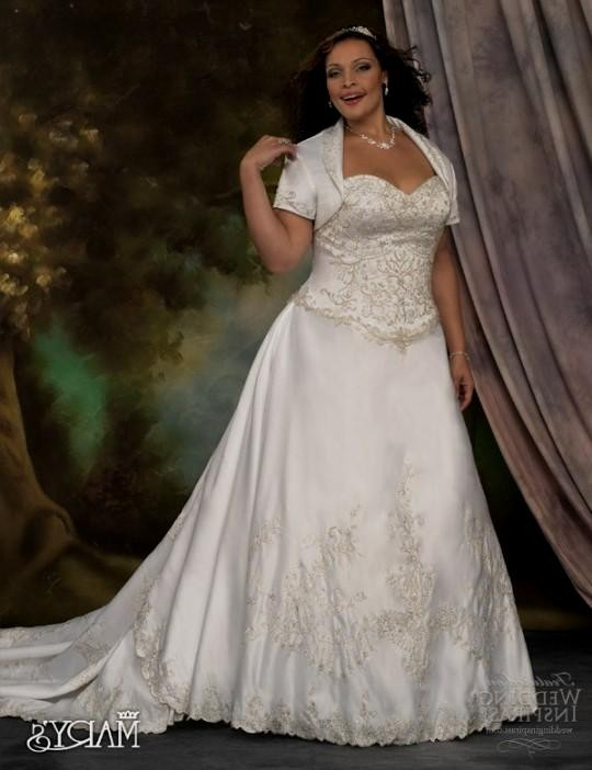 Plus size wedding dresses with color accents 2016 2017 for Plus size wedding dresses with color and sleeves