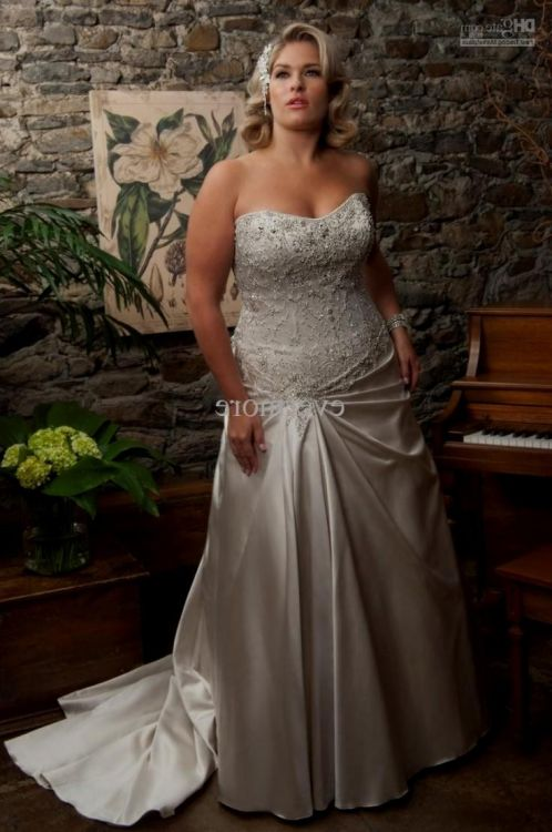 silver wedding dresses plus size | Wedding