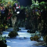 asvof-2016-07-14-highlight-i-amsterdam-fashion-week-ss17-liselore-frowijns-resort-2017-more-botanist