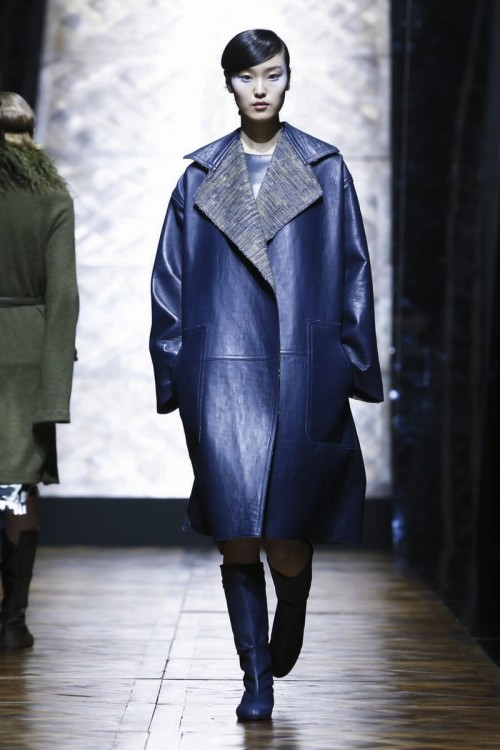 Pascal-Millet-Ready-To-Wear-Fall-Winter-2016-Paris-1337-1457032936-bigthumb.jpg