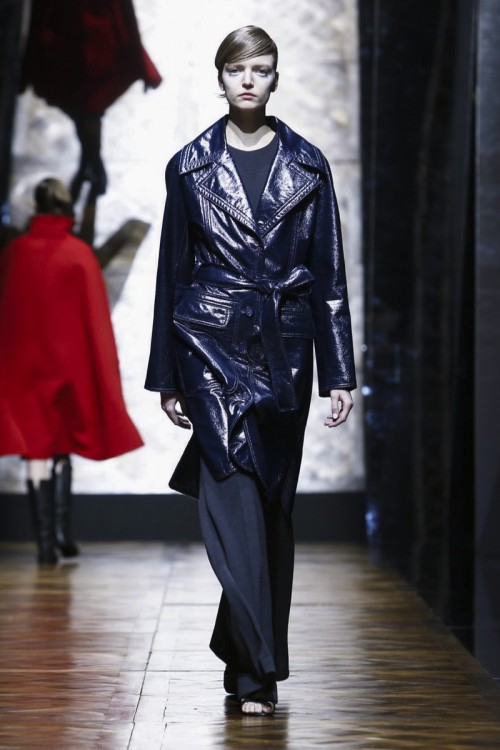 Pascal-Millet-Ready-To-Wear-Fall-Winter-2016-Paris-1356-1457032999-bigthumb.jpg