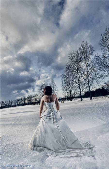 trash the dress winter